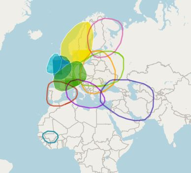 Amy Ethnicity Map